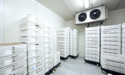 Kältetechnik HWT, Kälteanlagen, Heizungsfirma, HWT, Kühlung, Tiefkühlung